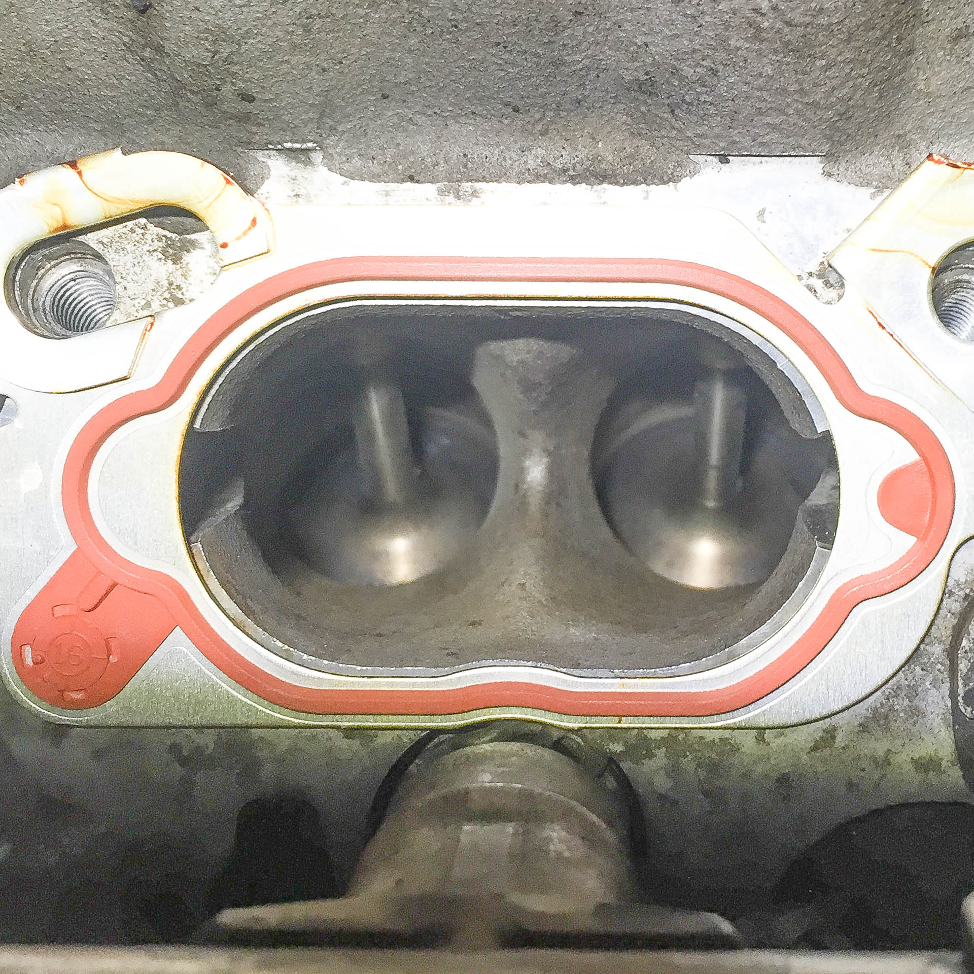 Workshop Install: Audi B7 RS4 Intake Valve Cleaning