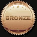 Bosch Bronze Service